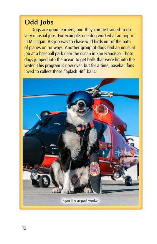 Book Preview For Dogs at Work Page 12