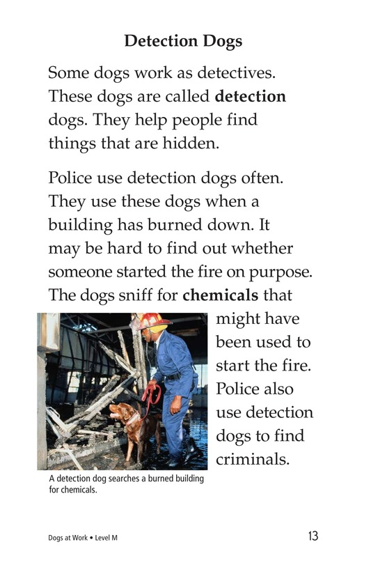 Book Preview For Dogs at Work Page 13