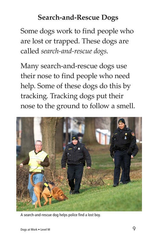 Book Preview For Dogs at Work Page 9
