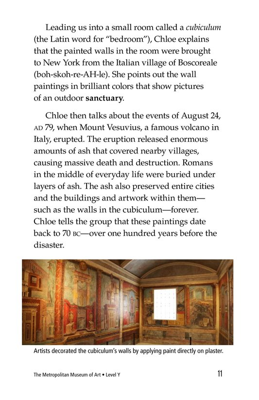 Book Preview For The Metropolitan Museum of Art Page 11
