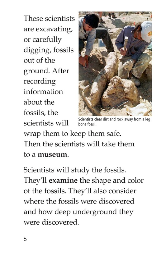 Book Preview For Discovering Dinosaurs Page 6