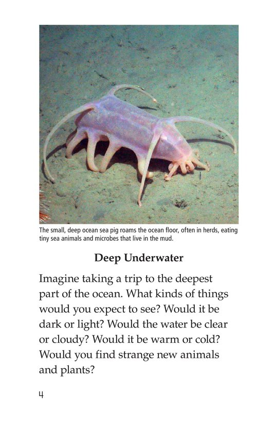 Book Preview For Deep in the Ocean Page 4