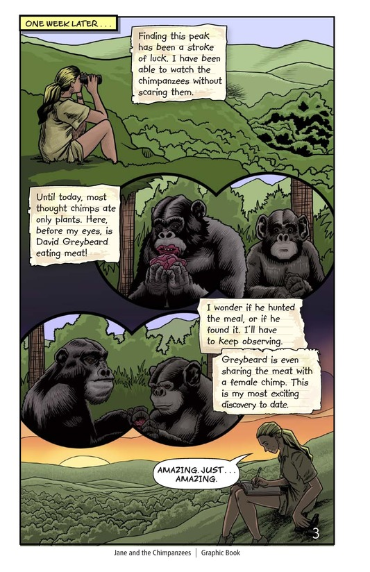 Book Preview For Jane and the Chimpanzees Page 4