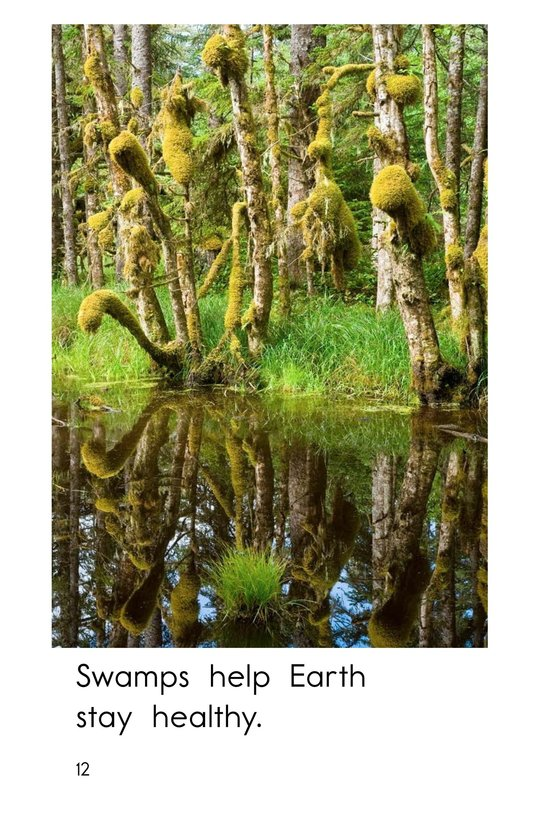Book Preview For Swamps Page 12