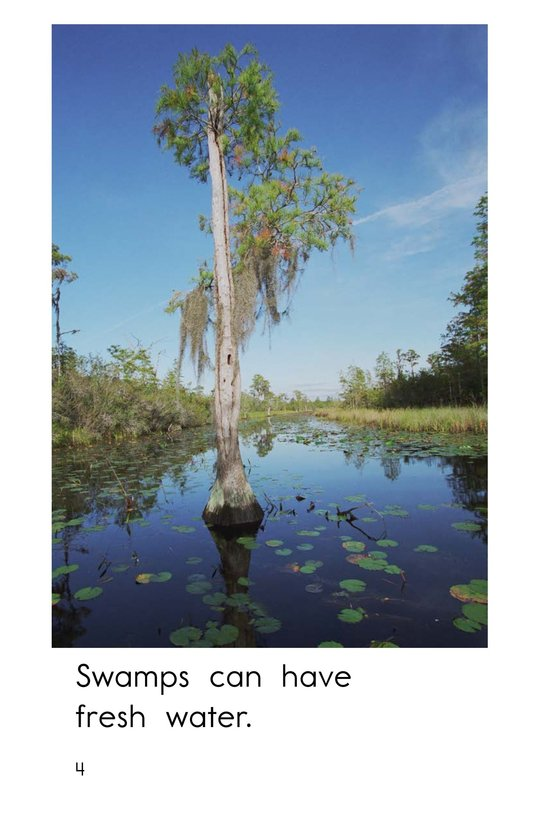 Book Preview For Swamps Page 4