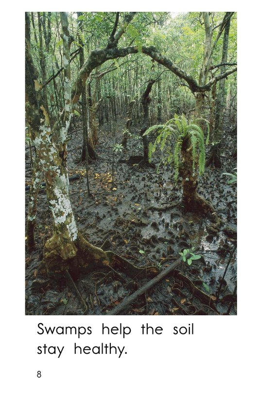 Book Preview For Swamps Page 8
