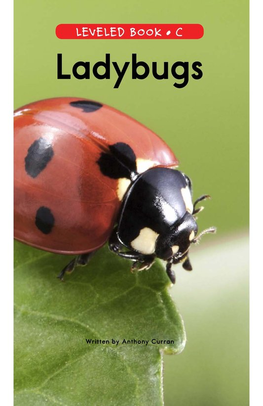 Book Preview For Ladybugs Page 0