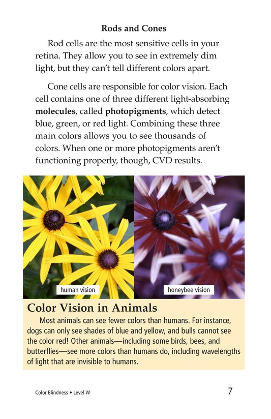 Book Preview For Color Blindness Page 7