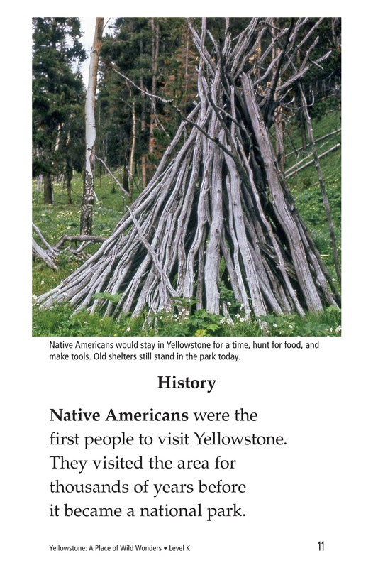 Book Preview For Yellowstone: A Place of Wild Wonders Page 11