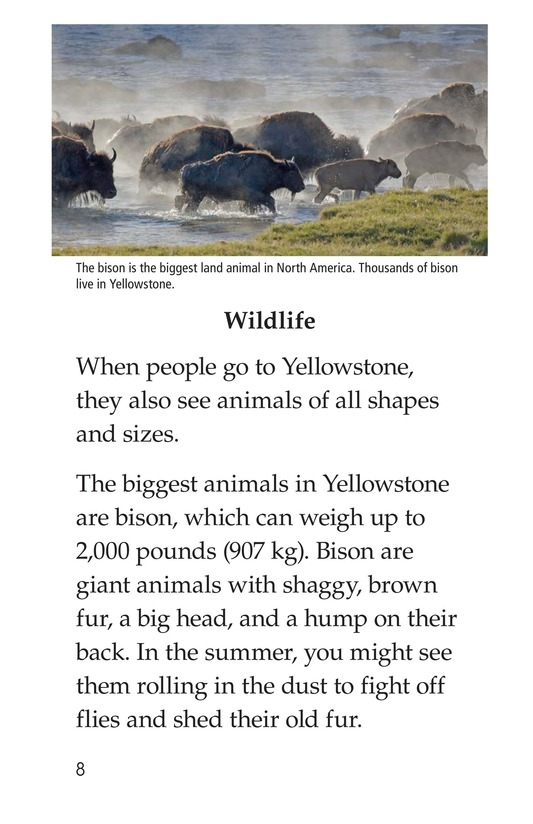 Book Preview For Yellowstone: A Place of Wild Wonders Page 8