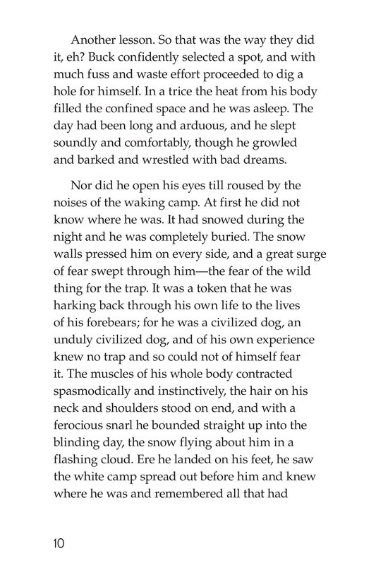 Book Preview For The Call of the Wild (Part 2) Page 10