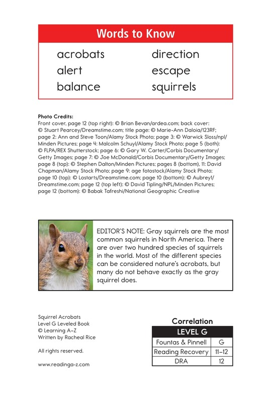 Book Preview For Squirrel Acrobats Page 2