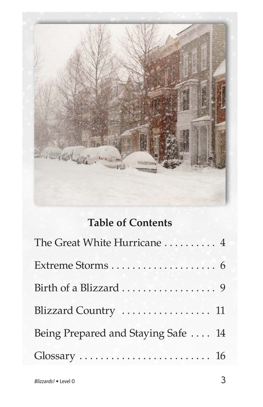 Book Preview For Blizzards! Page 3