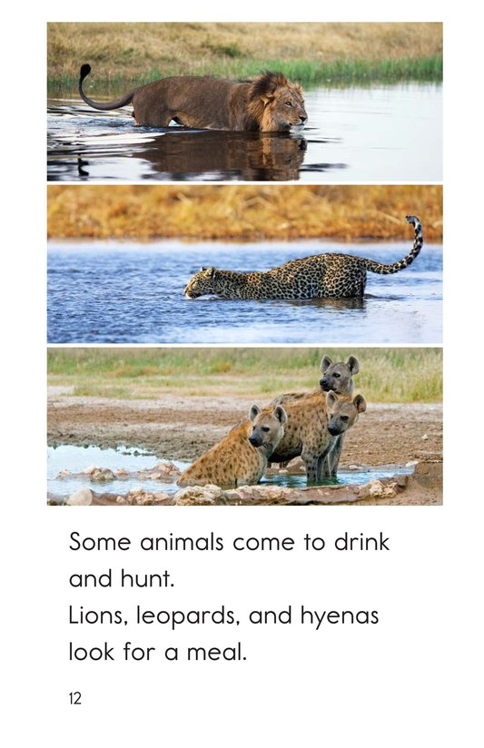 Book Preview For At the Watering Hole Page 12