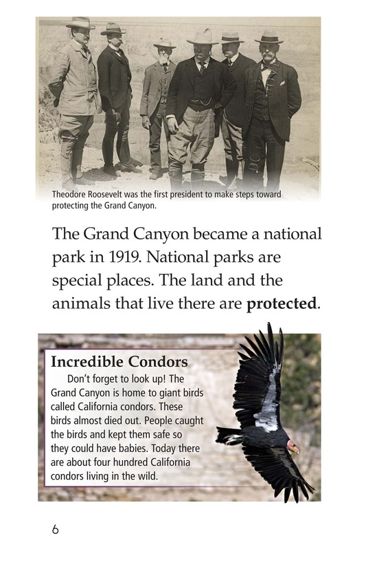 Book Preview For The Grand Canyon Page 6