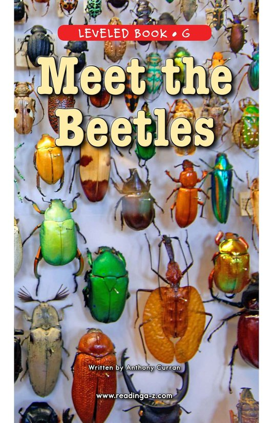 Book Preview For Meet the Beetles Page 0