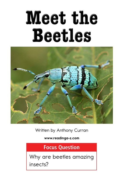 Book Preview For Meet the Beetles Page 1