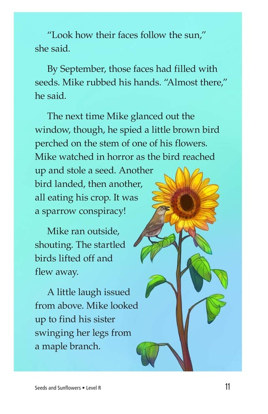 Book Preview For Book 3: Seeds and Sunflowers Page 11