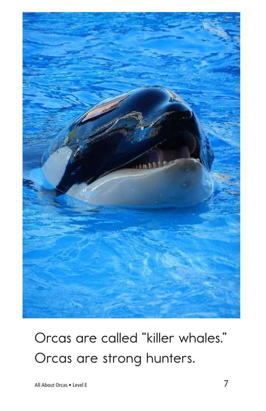 Book Preview For All About Orcas Page 7