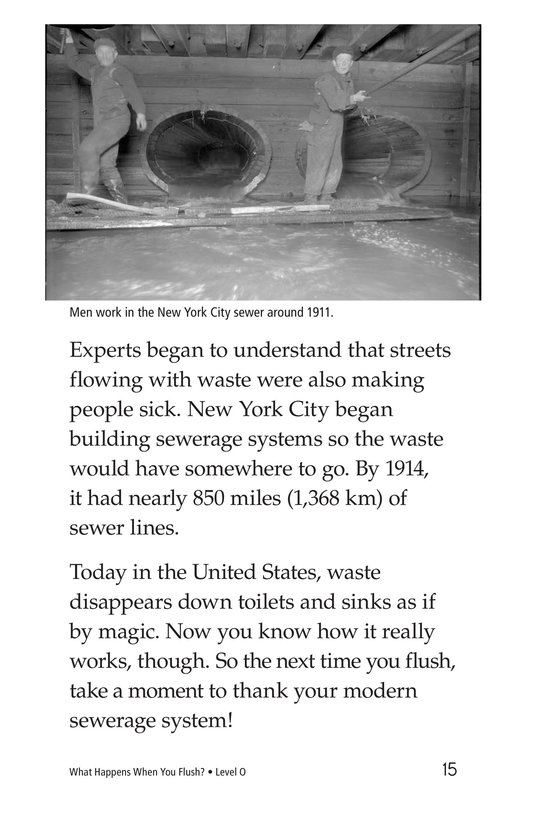 Book Preview For What Happens When You Flush? Page 15