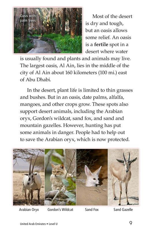 Book Preview For United Arab Emirates Page 9