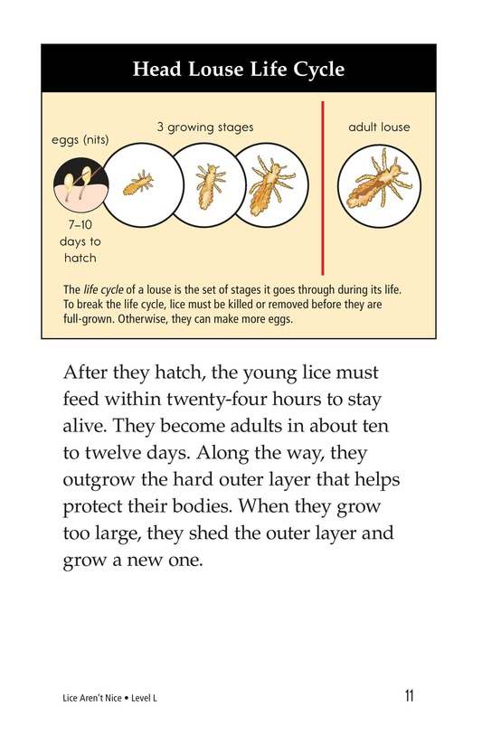Book Preview For Lice Aren't Nice Page 11