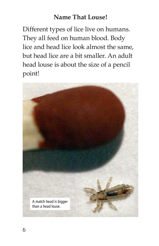 Book Preview For Lice Aren't Nice Page 6