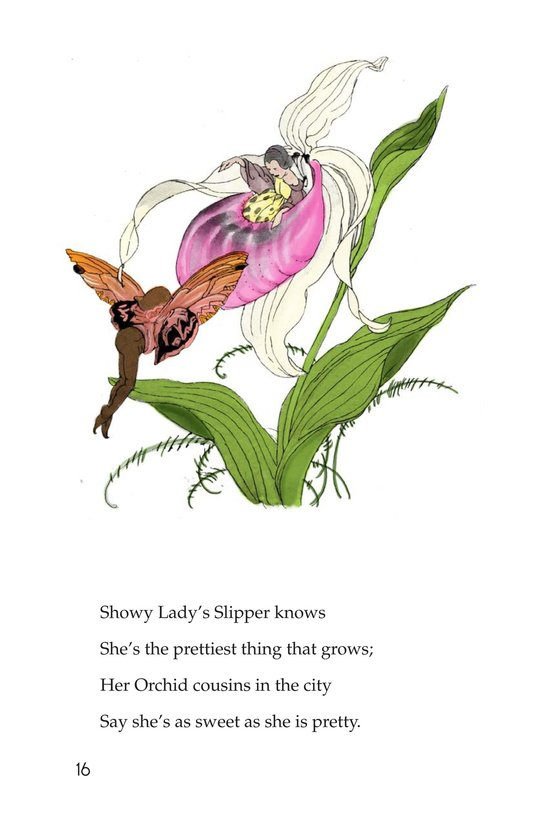 Book Preview For Wildflower Children Page 16