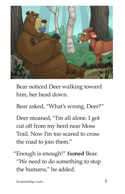 Book Preview For The Animal Bridge Page 5