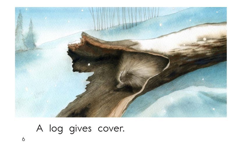 Book Preview For What Gives Cover? Page 6
