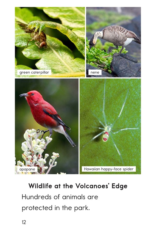 Book Preview For Hawaii Volcanoes National Park Page 12