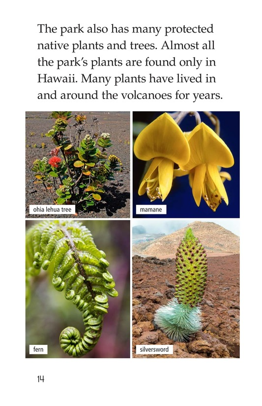 Book Preview For Hawaii Volcanoes National Park Page 14