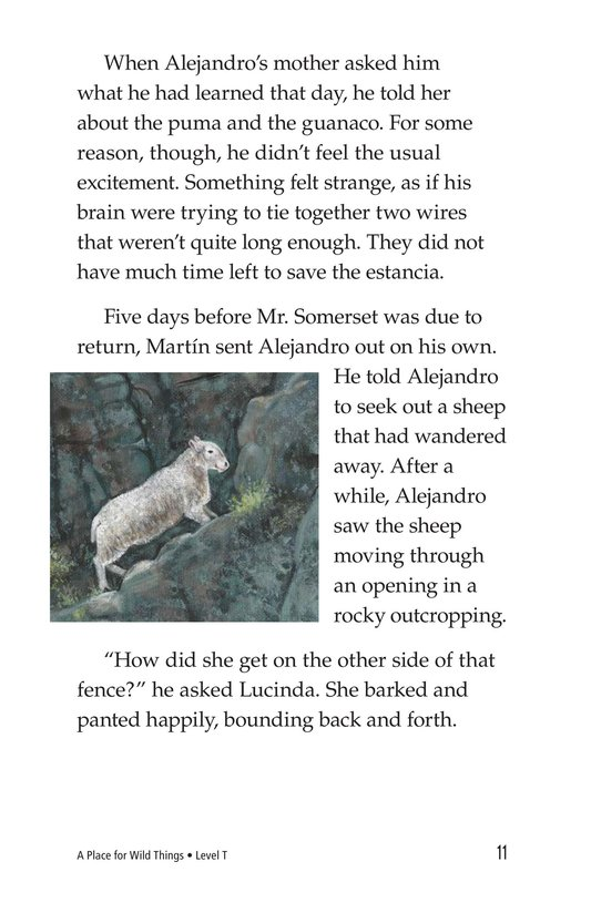 Book Preview For A Place for Wild Things Page 11
