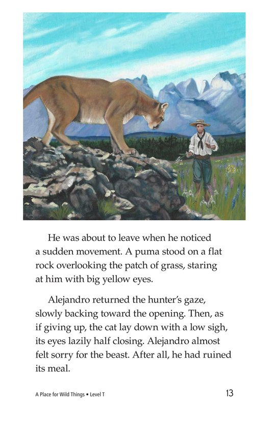 Book Preview For A Place for Wild Things Page 13