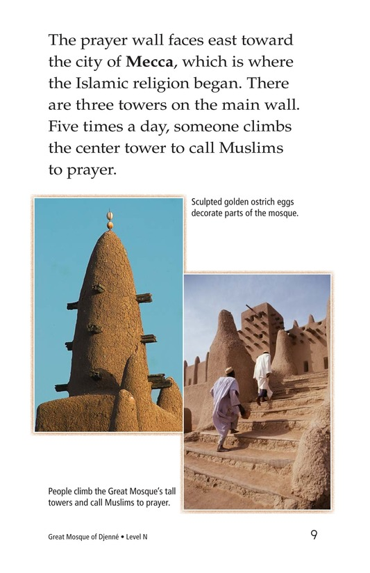 Book Preview For Great Mosque of Djenné Page 9
