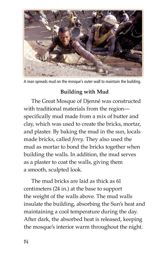Book Preview For Great Mosque of Djenné Page 14