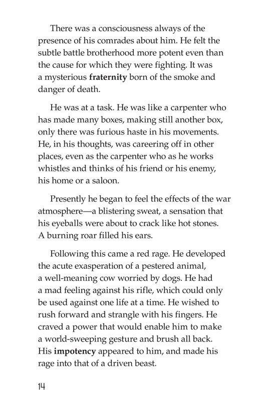 Book Preview For The Red Badge of Courage (Part 4) Page 14