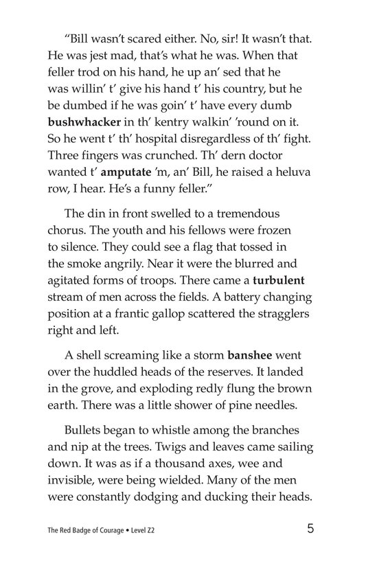 Book Preview For The Red Badge of Courage (Part 4) Page 5