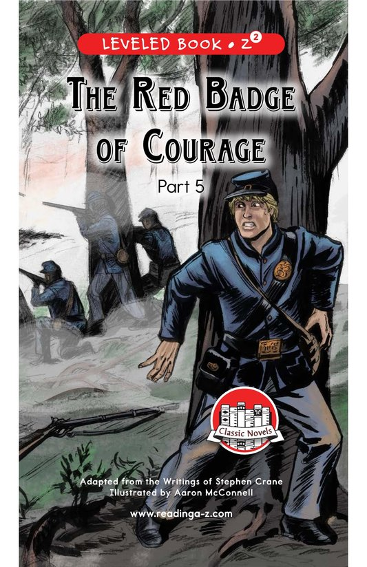 Book Preview For The Red Badge of Courage (Part 5) Page 0