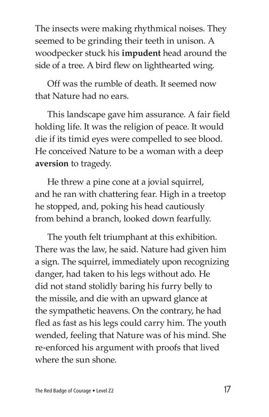 Book Preview For The Red Badge of Courage (Part 5) Page 17
