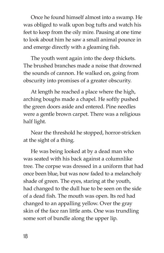 Book Preview For The Red Badge of Courage (Part 5) Page 18