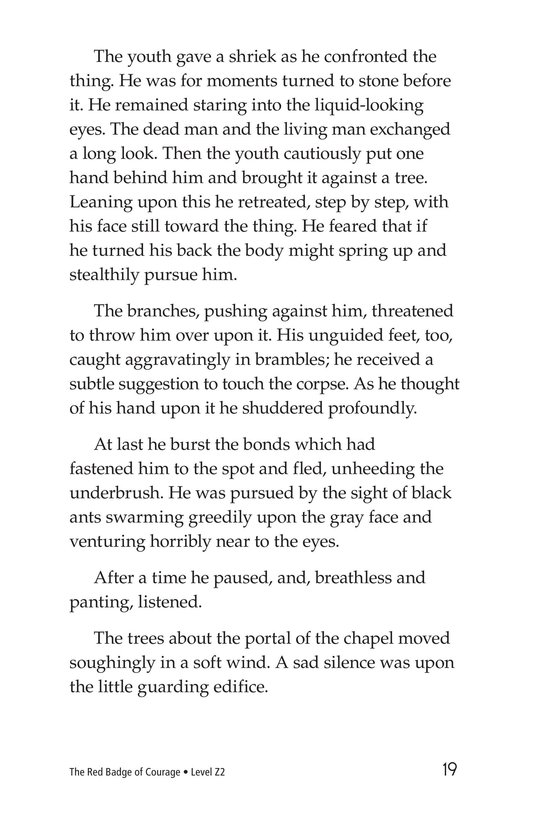 Book Preview For The Red Badge of Courage (Part 5) Page 19