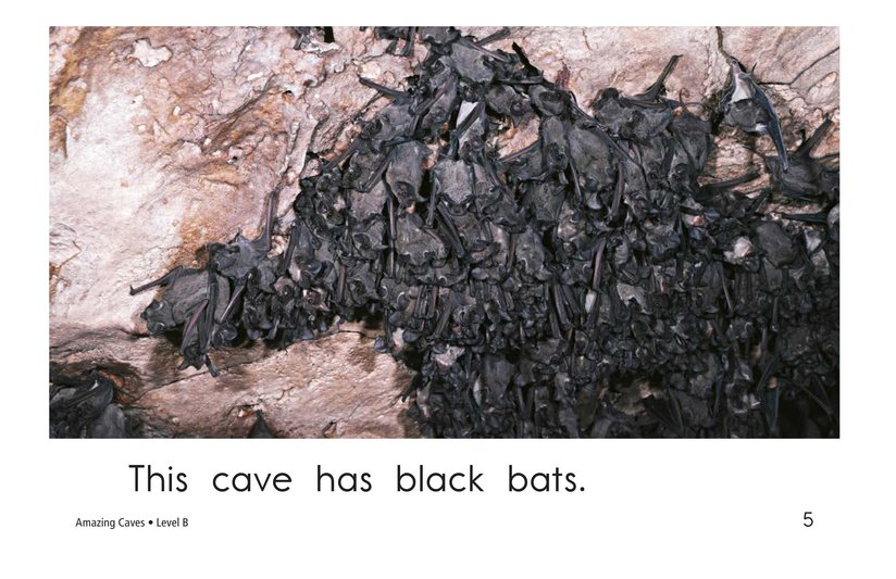 Book Preview For Amazing Caves Page 5
