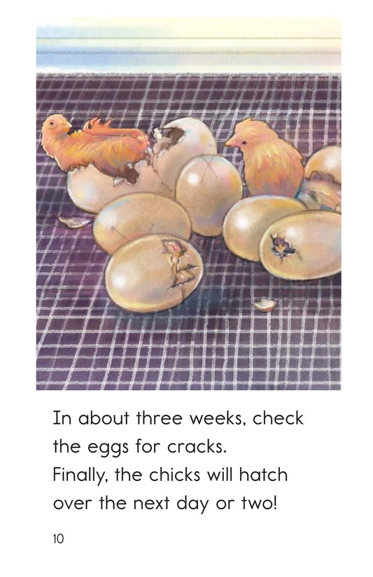 Book Preview For Hatching Eggs Page 10