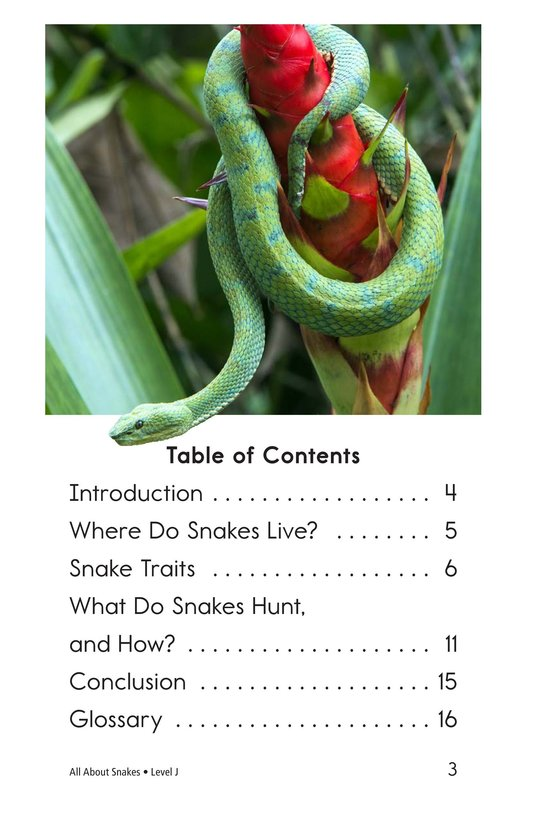 Book Preview For All About Snakes Page 3