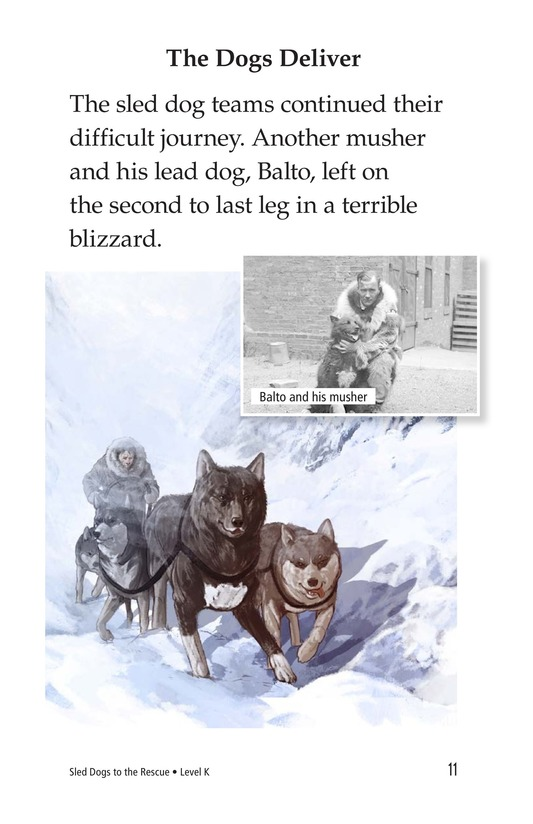 Book Preview For Sled Dogs to the Rescue Page 11