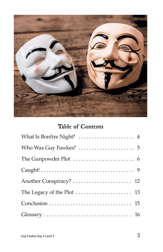 Book Preview For Guy Fawkes Day Page 3