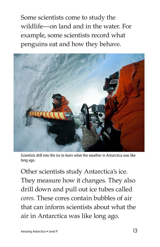 Book Preview For Amazing Antarctica Page 13