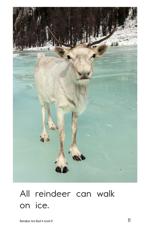 Book Preview For Reindeer Are Real Page 11