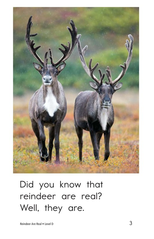 Book Preview For Reindeer Are Real Page 3